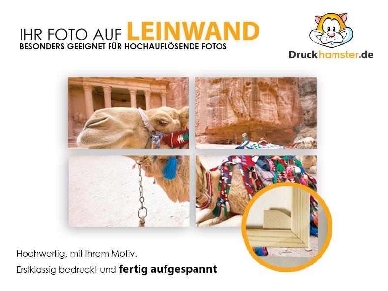 Photo-Leienwand